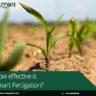 Effectiveness of Smart Fertigation in Reducing Input Cost