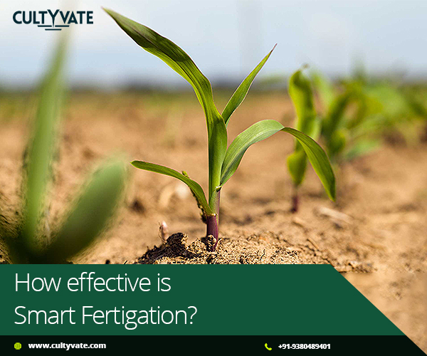 smart fertigation system